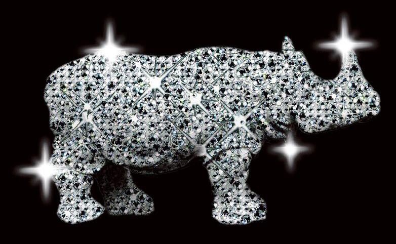 birmingham rhino2